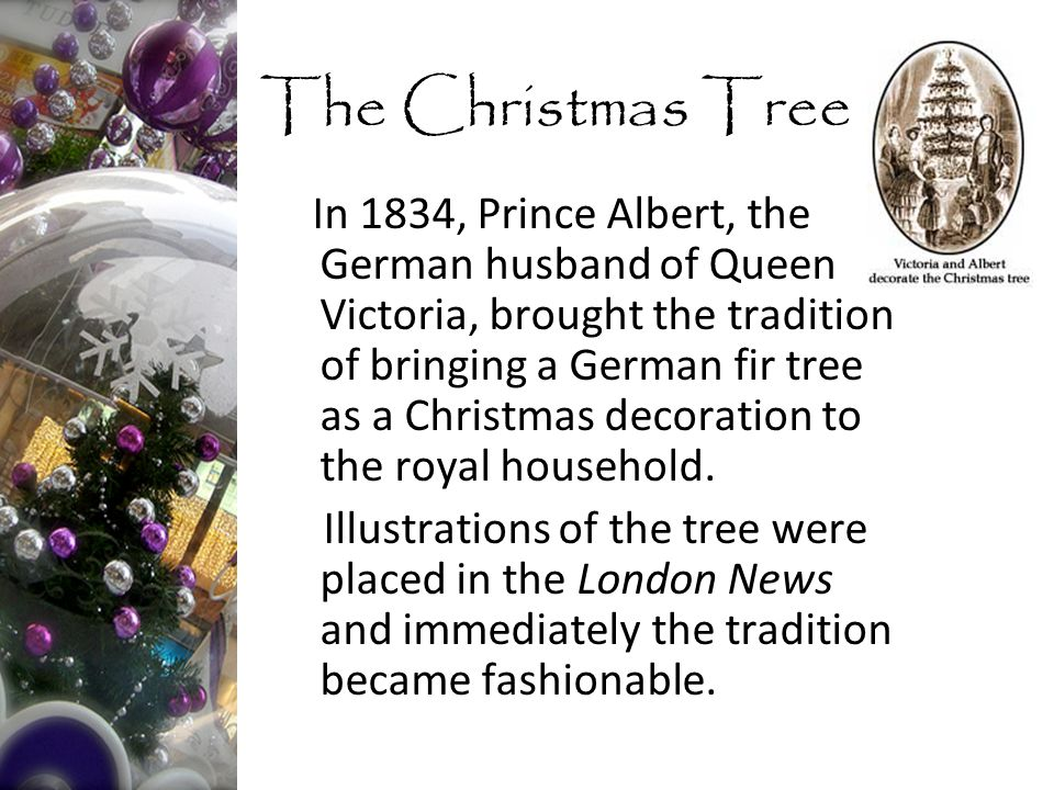 In 1834, Prince Albert, the German husband of Queen Victoria, brought the tradition of bringing a German fir tree as a Christmas decoration to the royal household.