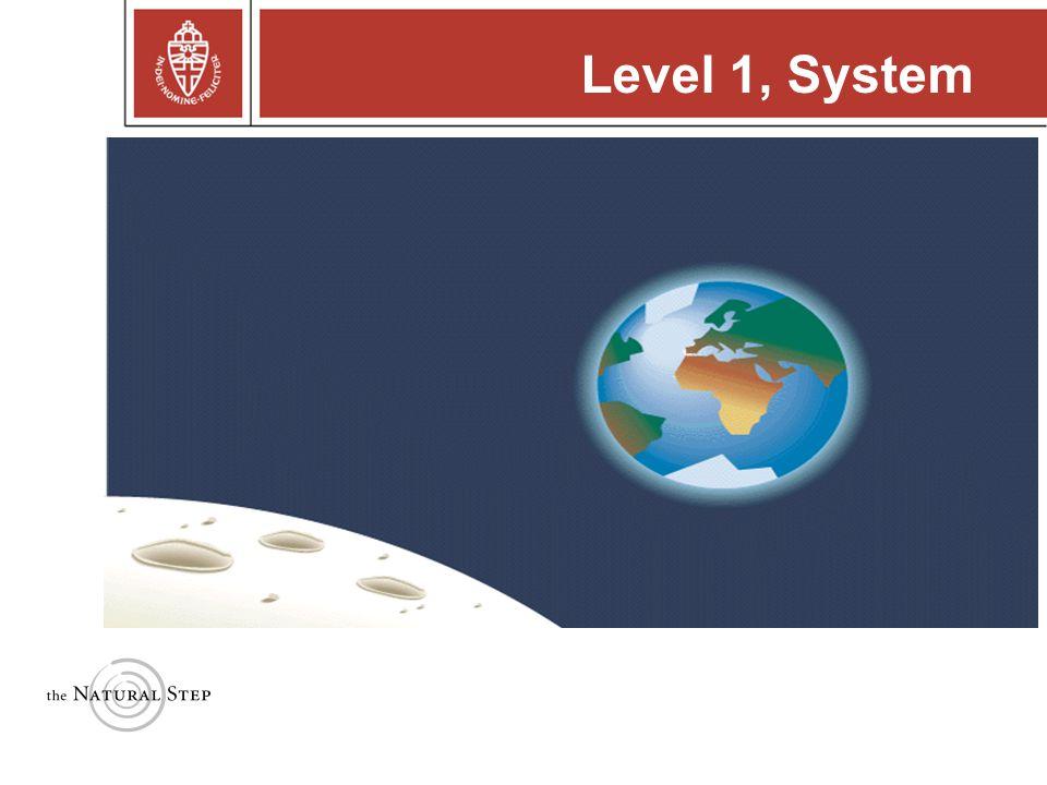 Level 1, System