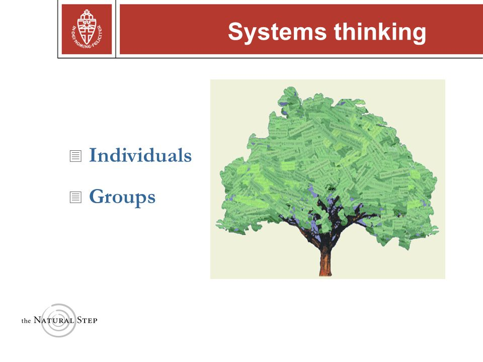 Copyright © 2004 The Natural Step Systems thinking  Individuals  Groups
