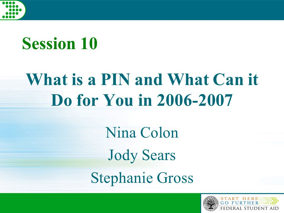 What is a PIN and What Can it Do for You in 2006-2007 Nina Colon Jody Sears Stephanie Gross Session 10