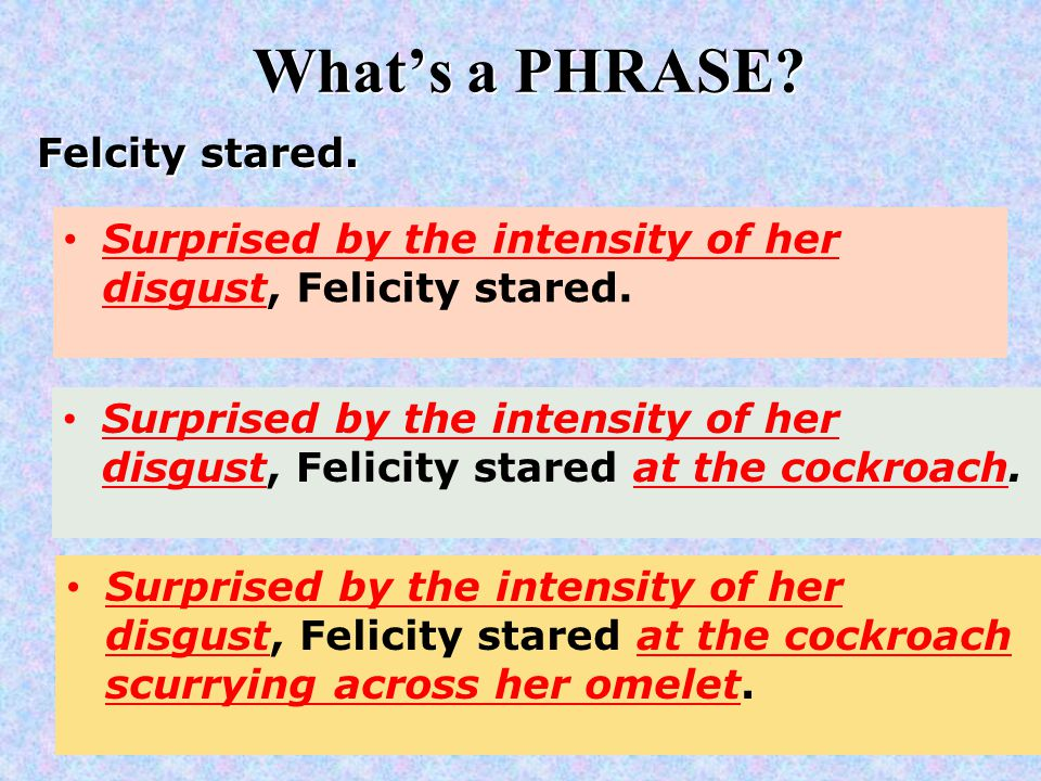 What's a PHRASE. Felcity stared. Surprised by the intensity of her disgust, Felicity stared.