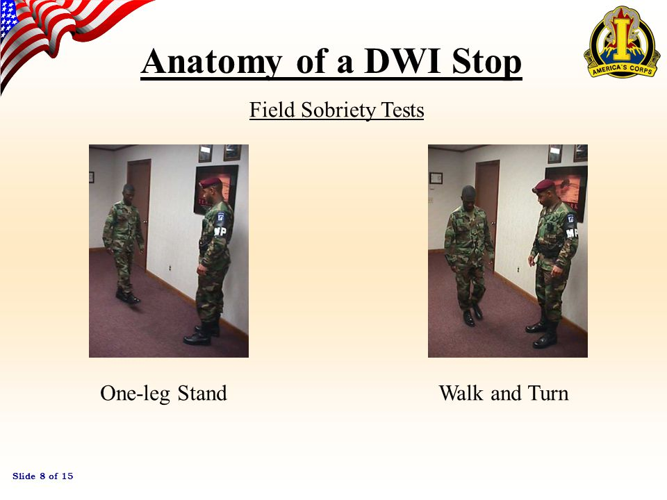 Slide 7 of 15 Anatomy of a DWI Stop After checks have been completed, the LEO makes his approach to the vehicle.