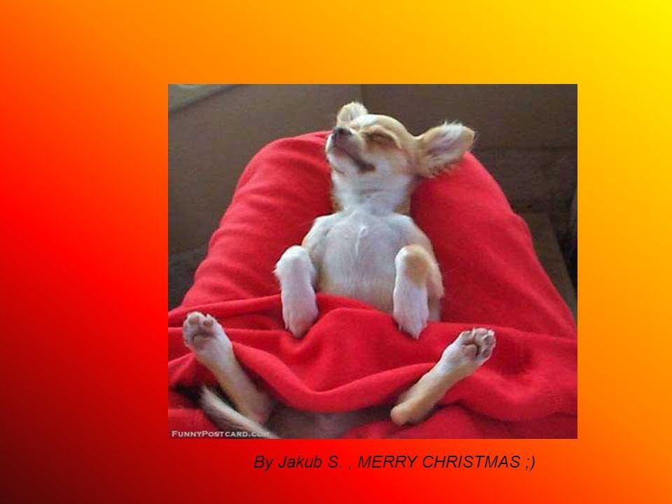 By Jakub S., MERRY CHRISTMAS ;)