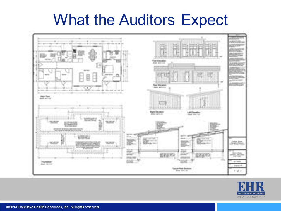 What the Auditors Expect
