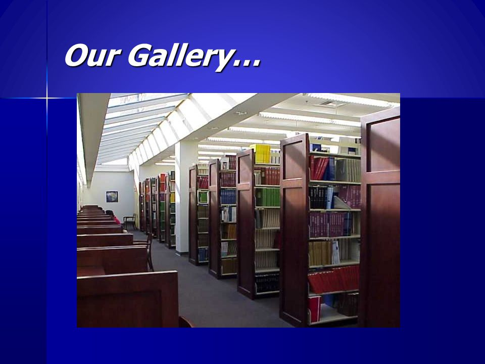 Our Gallery…