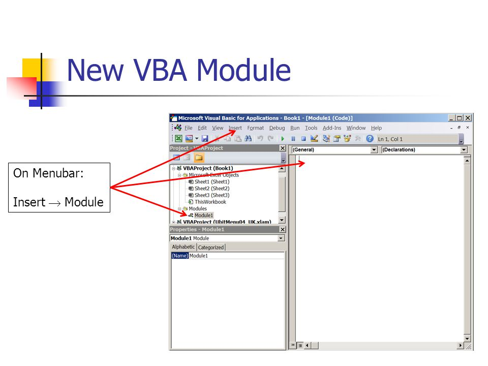 New VBA Module On Menubar: Insert  Module