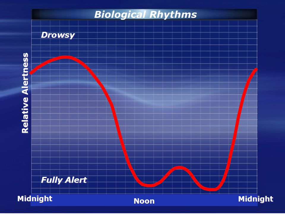 Fully Alert Midnight Noon Relative Alertness Biological Rhythms Drowsy
