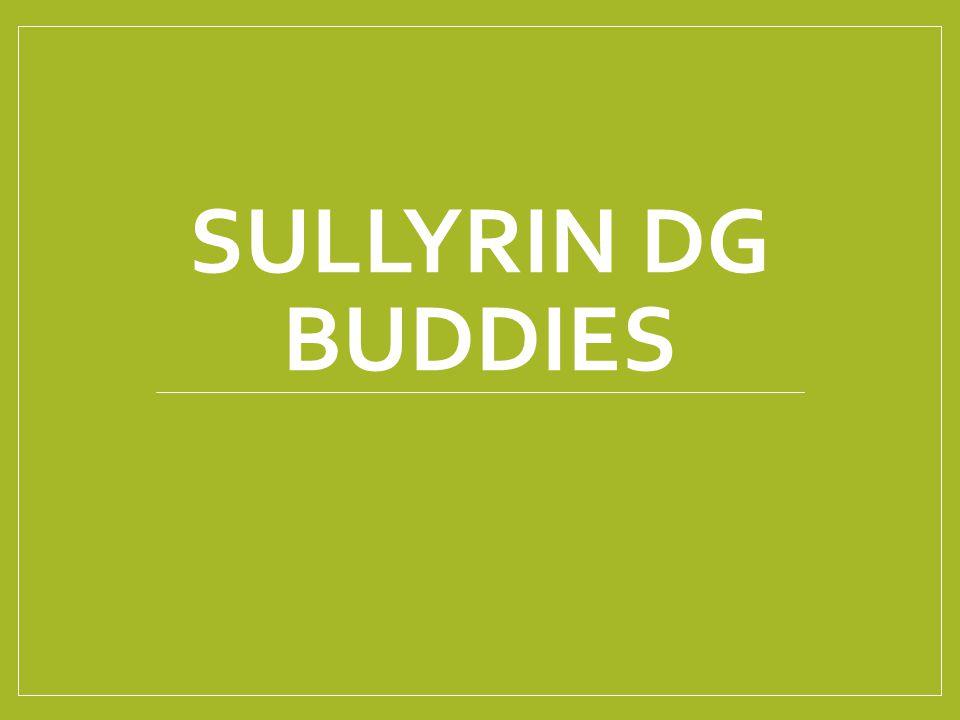 SULLYRIN DG BUDDIES