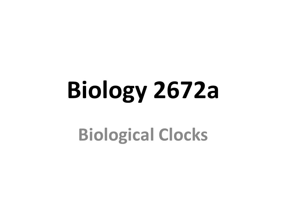 Biology 2672a Biological Clocks