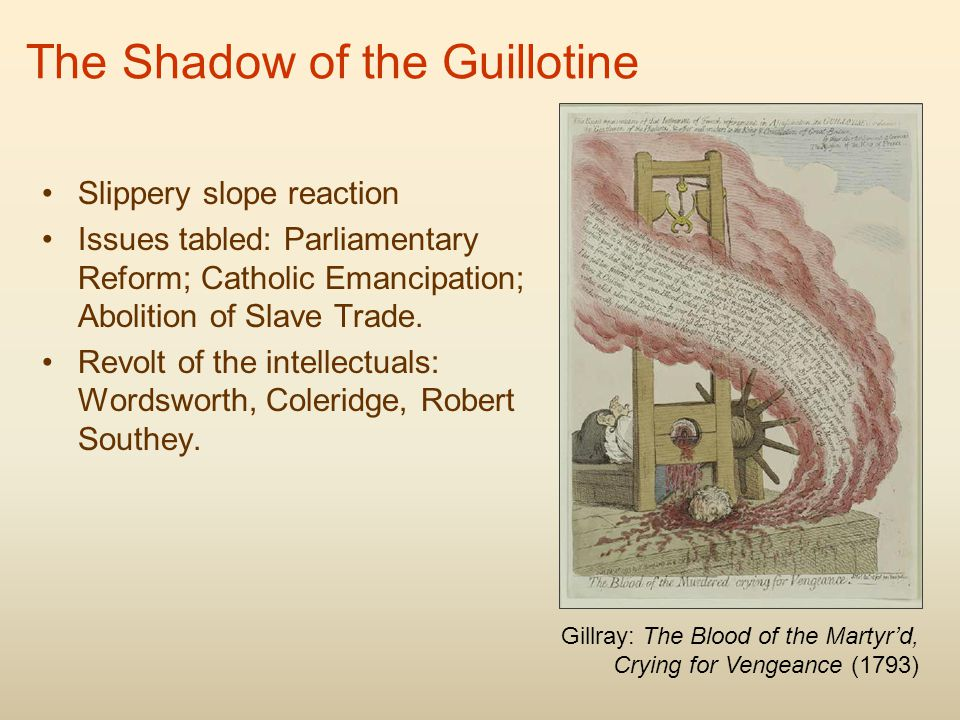 The Shadow of the Guillotine Slippery slope reaction Issues tabled: Parliamentary Reform; Catholic Emancipation; Abolition of Slave Trade.