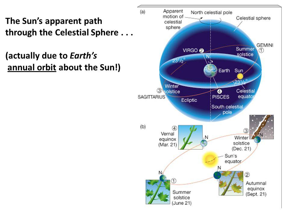The Sun's apparent path through the Celestial Sphere...