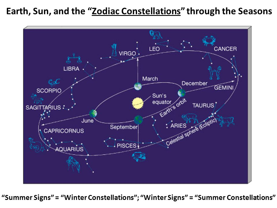 Earth, Sun, and the Zodiac Constellations through the Seasons Summer Signs = Winter Constellations ; Winter Signs = Summer Constellations