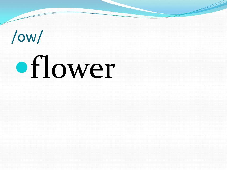 /ow/ flower