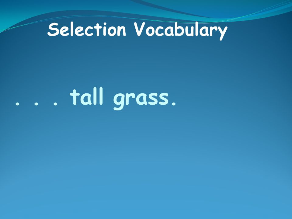 ... tall grass. Selection Vocabulary