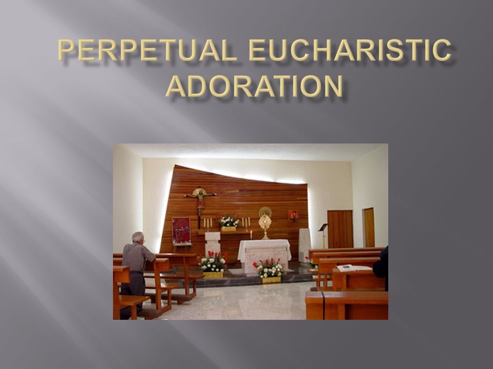 ORGANIZATIONAL STRUCTURE Division Leaders  After perpetual adoration begins, the division leaders assist the head coordinator, as needed.