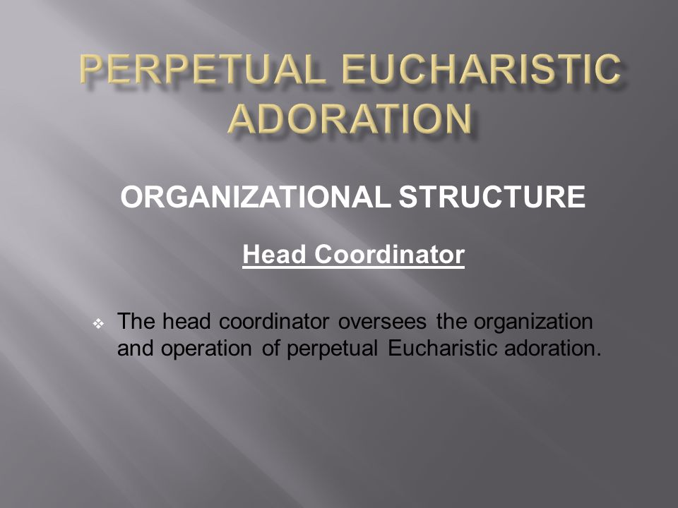 ORGANIZATIONAL STRUCTURE Head Coordinator  The head coordinator oversees the organization and operation of perpetual Eucharistic adoration.