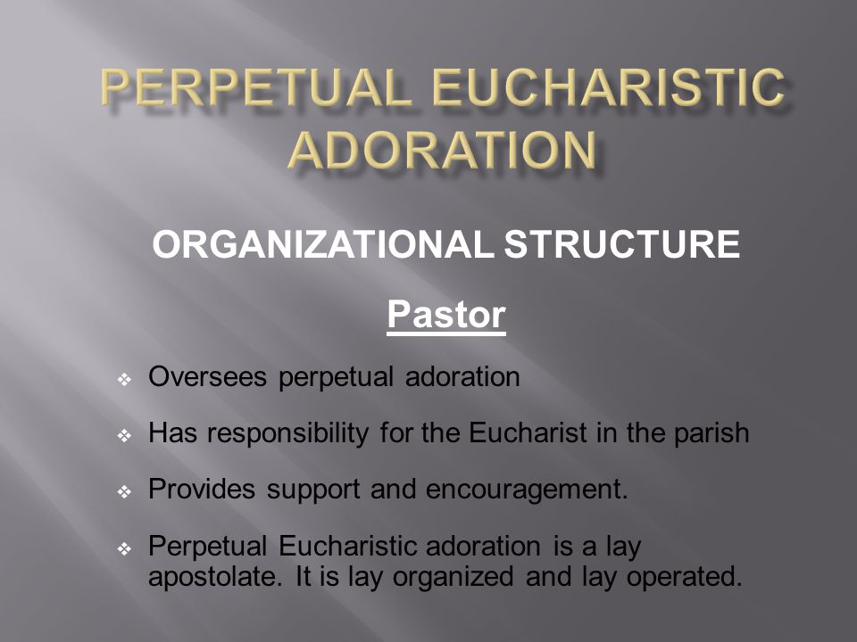 ORGANIZATIONAL STRUCTURE Pastor  Oversees perpetual adoration  Has responsibility for the Eucharist in the parish  Provides support and encouragement.