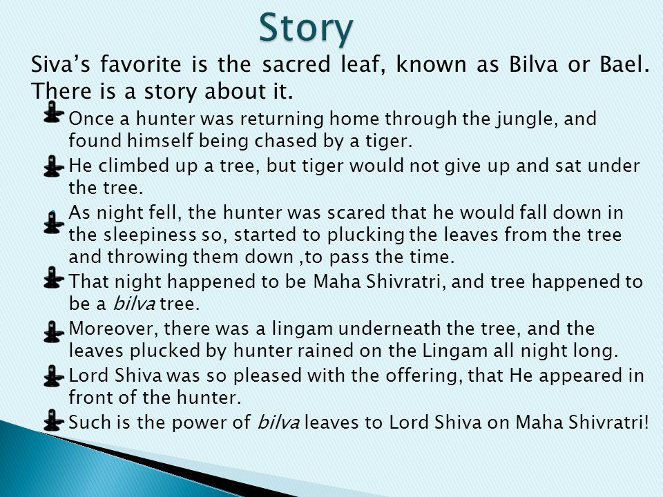 Siva's favorite is the sacred leaf, known as Bilva or Bael. There is a story about it. Once a hunter was returning home through the jungle, and found