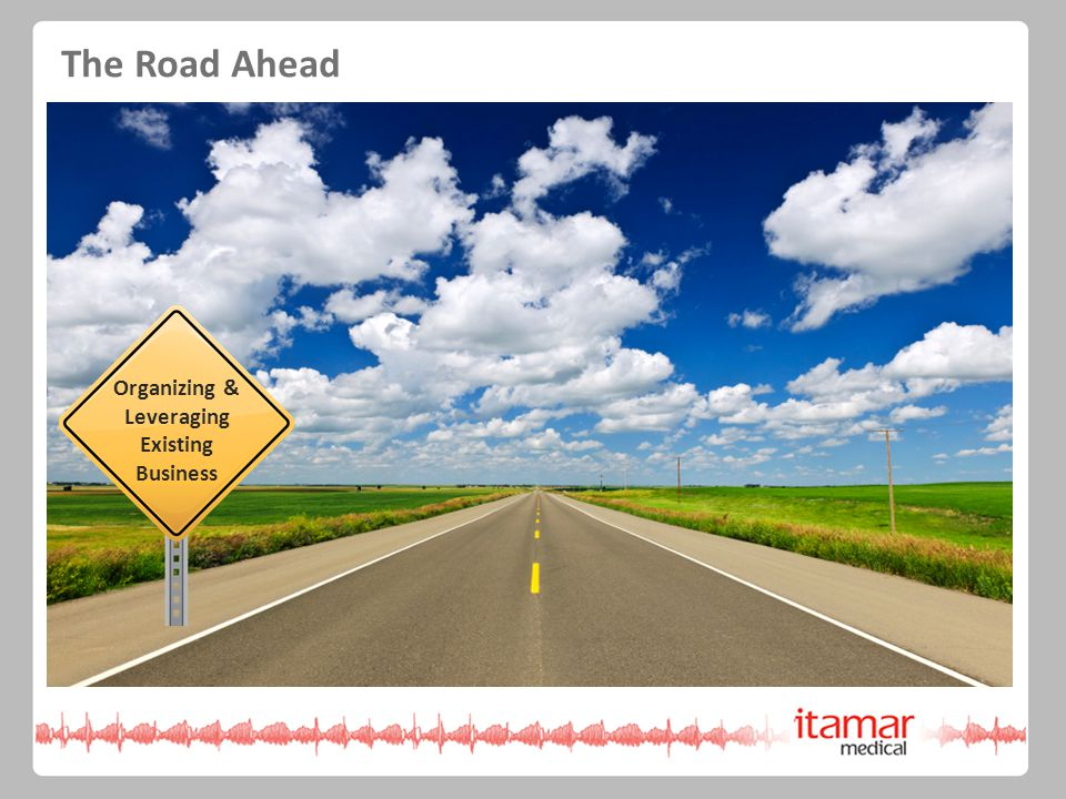 Organizing & Leveraging Existing Business The Road Ahead