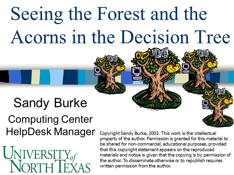Seeing the Forest and the Acorns in the Decision Tree Sandy Burke Computing Center HelpDesk Manager Copyright Sandy Burke, 2003.