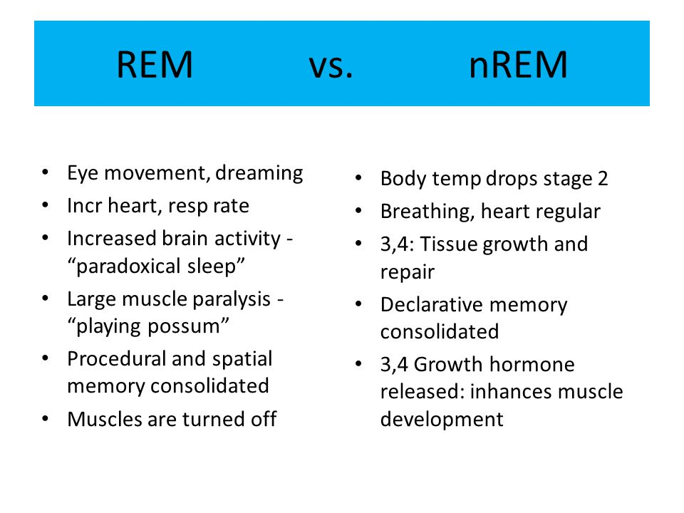 Eye movement, dreaming Incr heart, resp rate Increased brain activity - paradoxical sleep Large muscle paralysis - playing possum Procedural and spatial memory consolidated Muscles are turned off Body temp drops stage 2 Breathing, heart regular 3,4: Tissue growth and repair Declarative memory consolidated 3,4 Growth hormone released: inhances muscle development REM vs.