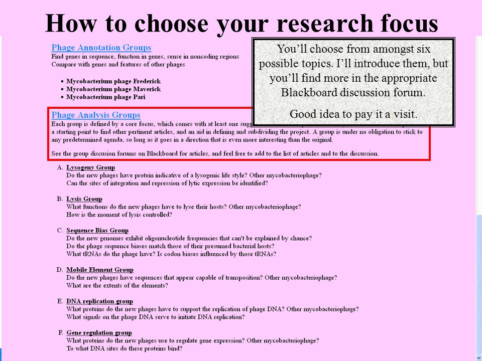 How to choose your research focus You'll choose from amongst six possible topics. I'll introduce them, but you'll find more in the appropriate Blackbo