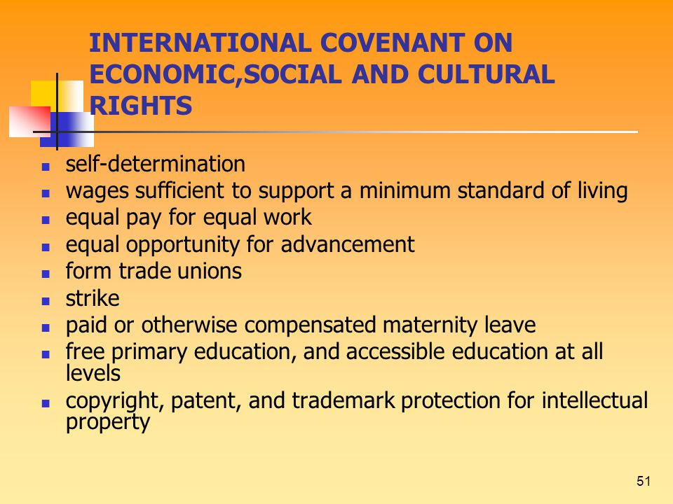 51 INTERNATIONAL COVENANT ON ECONOMIC,SOCIAL AND CULTURAL RIGHTS self-determination wages sufficient to support a minimum standard of living equal pay for equal work equal opportunity for advancement form trade unions strike paid or otherwise compensated maternity leave free primary education, and accessible education at all levels copyright, patent, and trademark protection for intellectual property