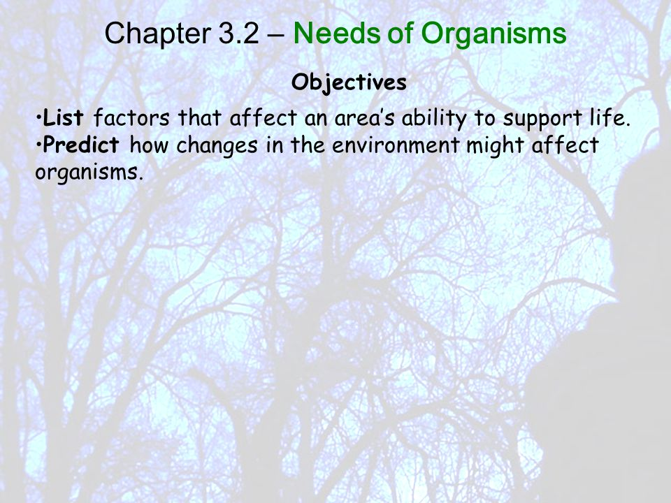 Objectives List factors that affect an area's ability to support life.