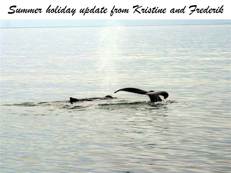 Summer holiday update from Kristine and Frederik