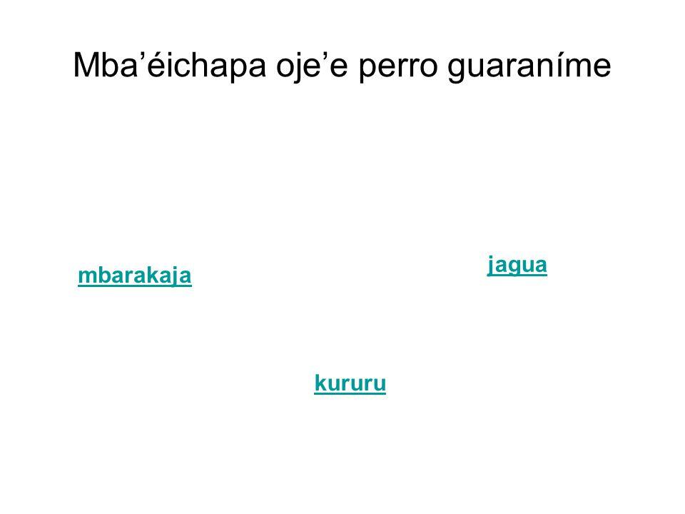 Mba'éichapa oje'e perro guaraníme mbarakaja kururu jagua