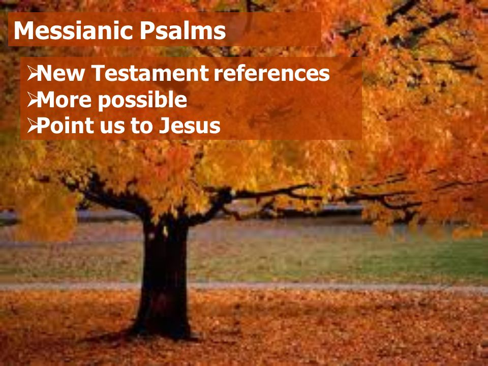  New Testament references  More possible  Point us to Jesus Messianic Psalms
