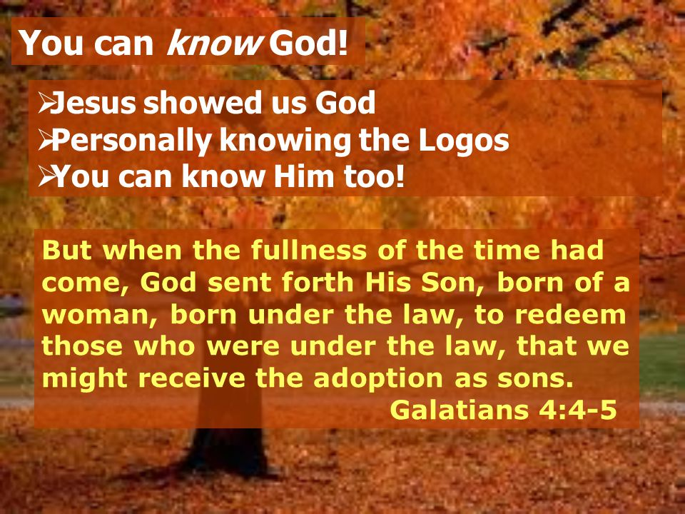  Jesus showed us God  Personally knowing the Logos  You can know Him too.