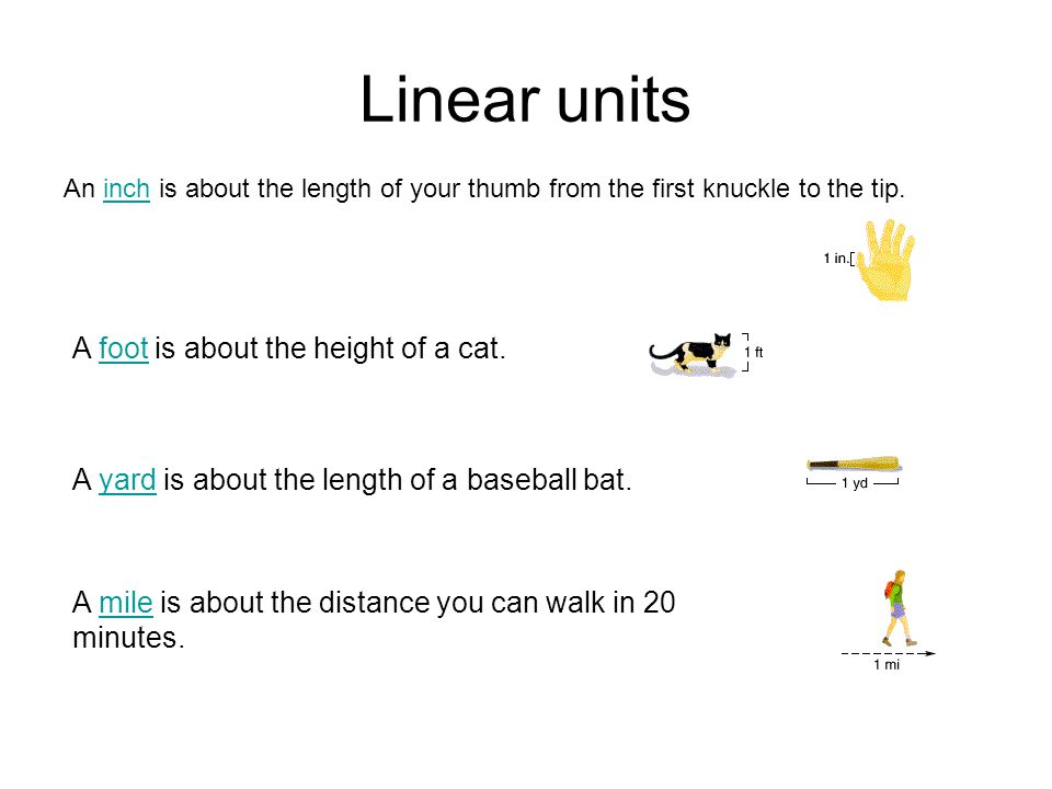 Linear units An inch is about the length of your thumb from the first knuckle to the tip.inch A foot is about the height of a cat. foot A yard is abou