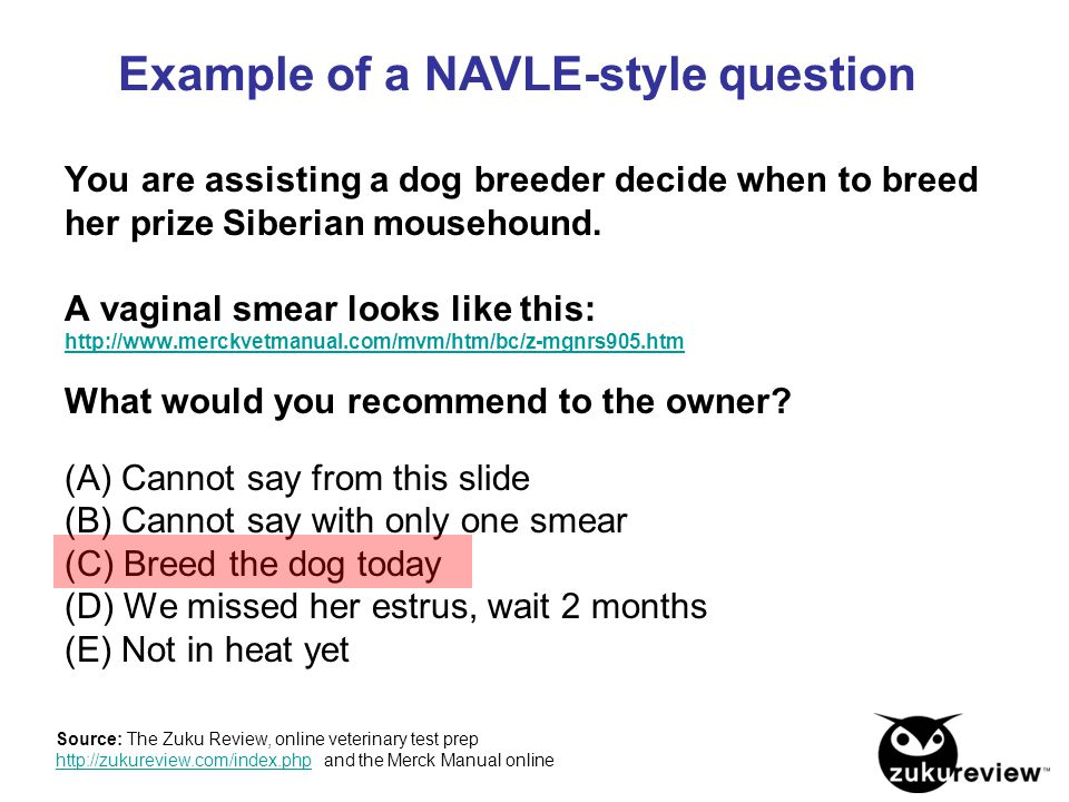You are assisting a dog breeder decide when to breed her prize Siberian mousehound. A vaginal smear looks like this: http://www.merckvetmanual.com/mvm