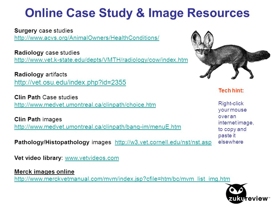 Online Case Study & Image Resources Surgery case studies http://www.acvs.org/AnimalOwners/HealthConditions/ Radiology case studies http://www.vet.k-st