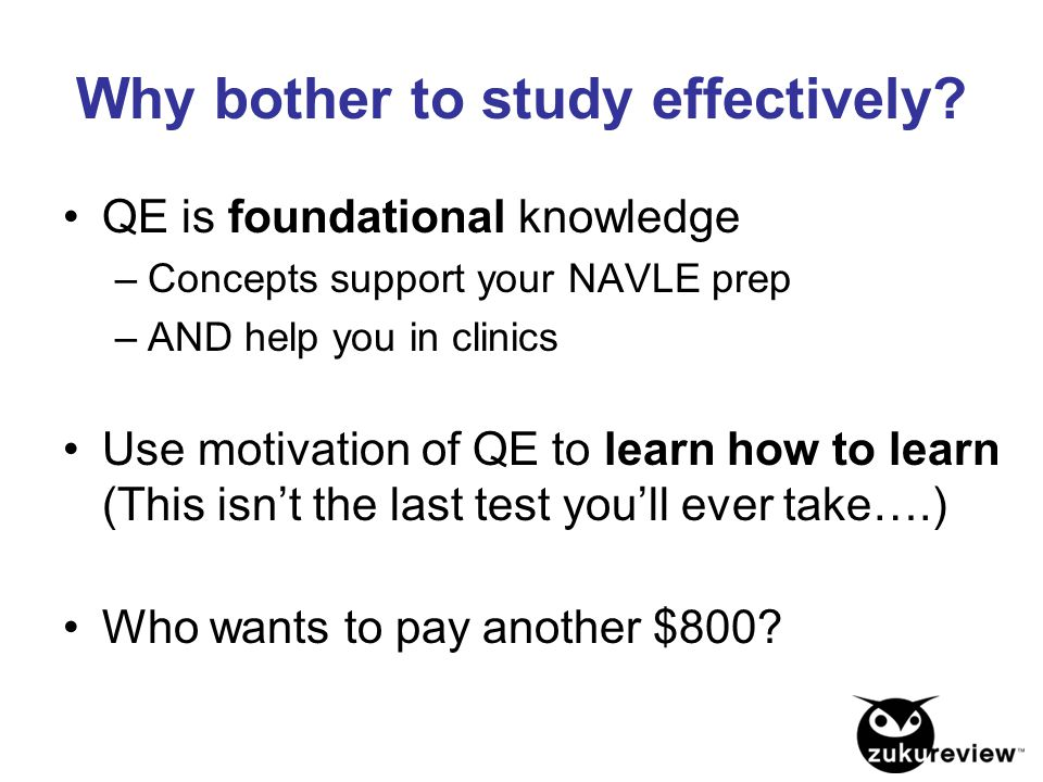 Why bother to study effectively? QE is foundational knowledge –Concepts support your NAVLE prep –AND help you in clinics Use motivation of QE to learn