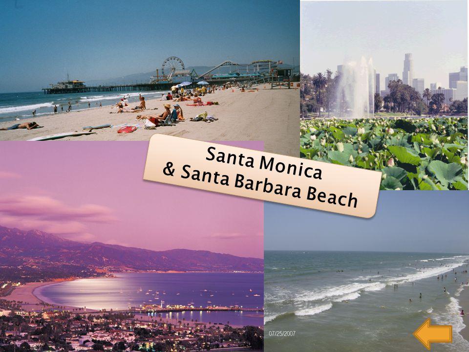 Santa Monica & Santa Barbara Beach Santa Monica & Santa Barbara Beach