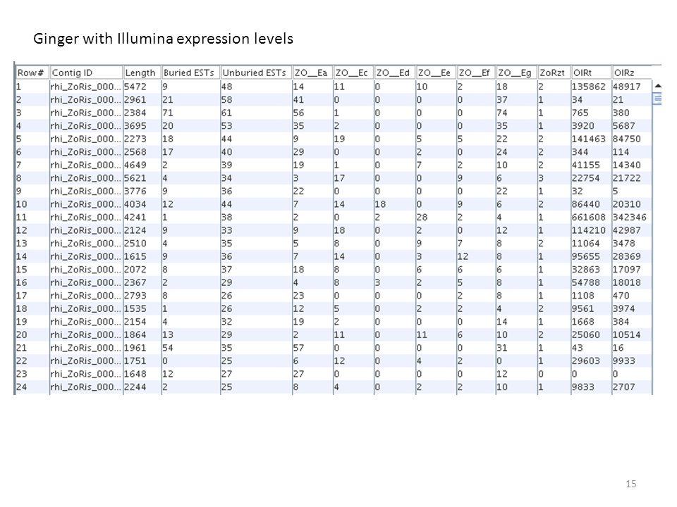 15 Ginger with Illumina expression levels