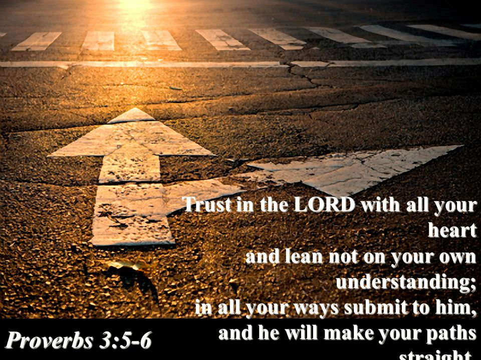 Trust in the LORD with all your heart and lean not on your own understanding; and lean not on your own understanding; in all your ways submit to him, and he will make your paths straight.