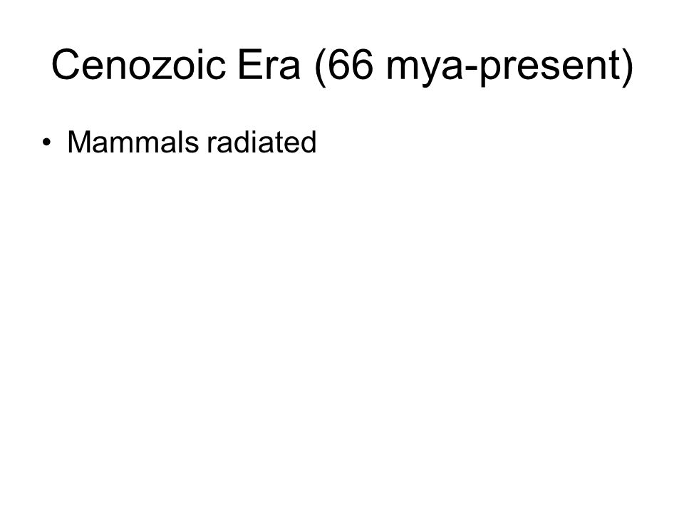 Cenozoic Era (66 mya-present) Mammals radiated
