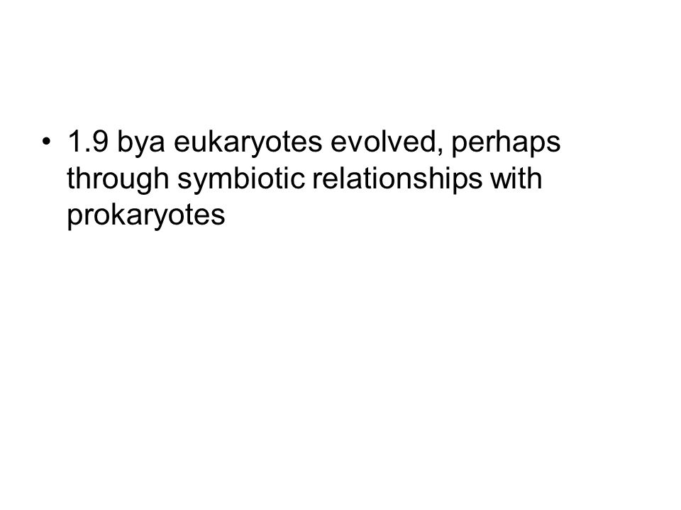 1.9 bya eukaryotes evolved, perhaps through symbiotic relationships with prokaryotes