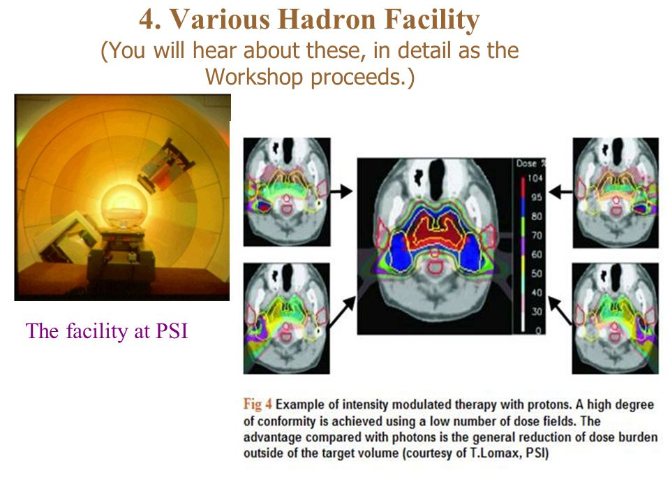 4. Various Hadron Facility (You will hear about these, in detail as the Workshop proceeds.) The facility at PSI