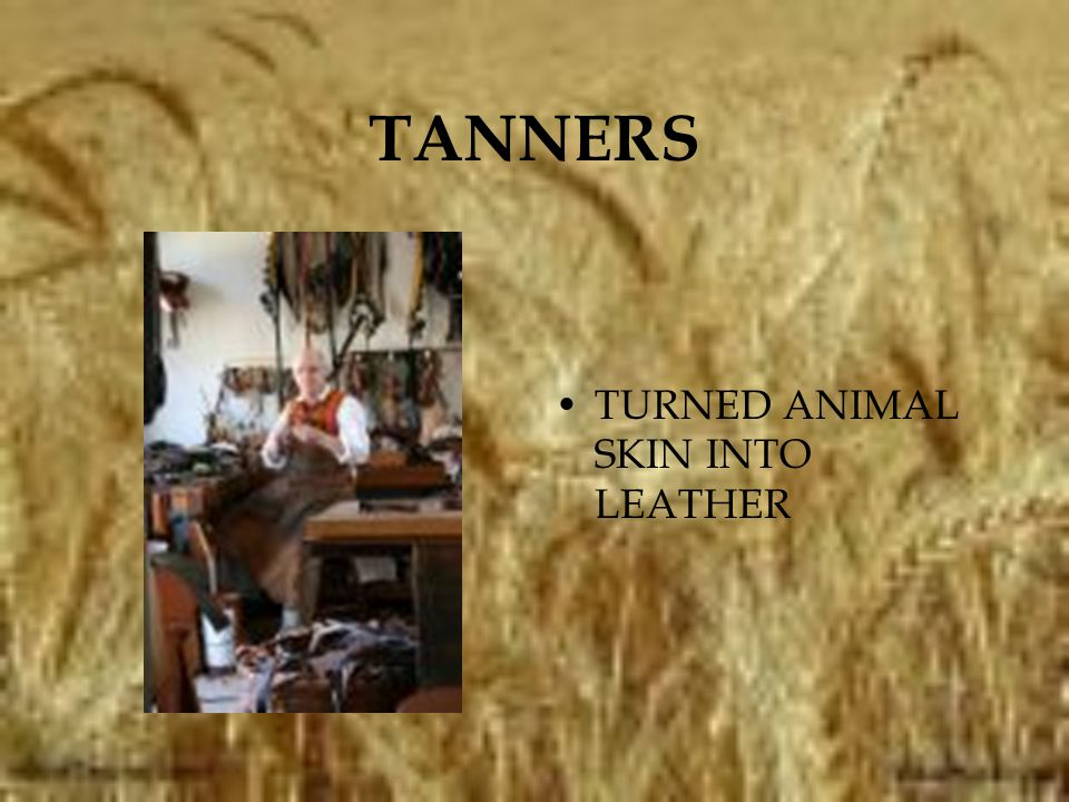 TANNERS TURNED ANIMAL SKIN INTO LEATHER