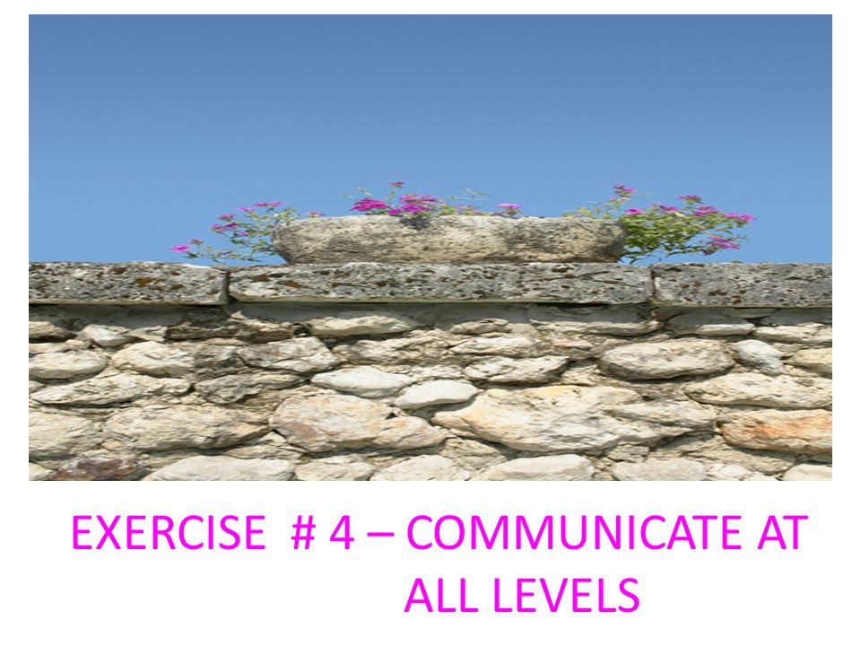 EXERCISE # 4 – COMMUNICATE AT ALL LEVELS