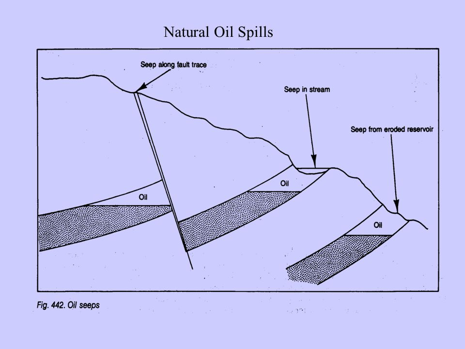 Natural Oil Spills
