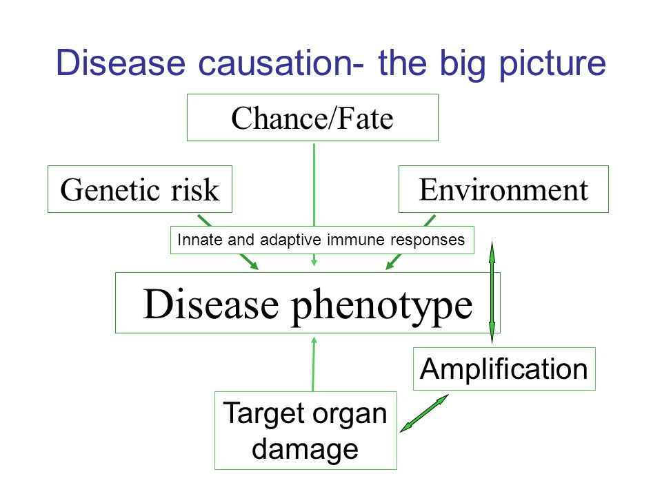 Disease causation- the big picture Disease phenotype Amplification Target organ damage Genetic risk Environment Chance/Fate Innate and adaptive immune responses