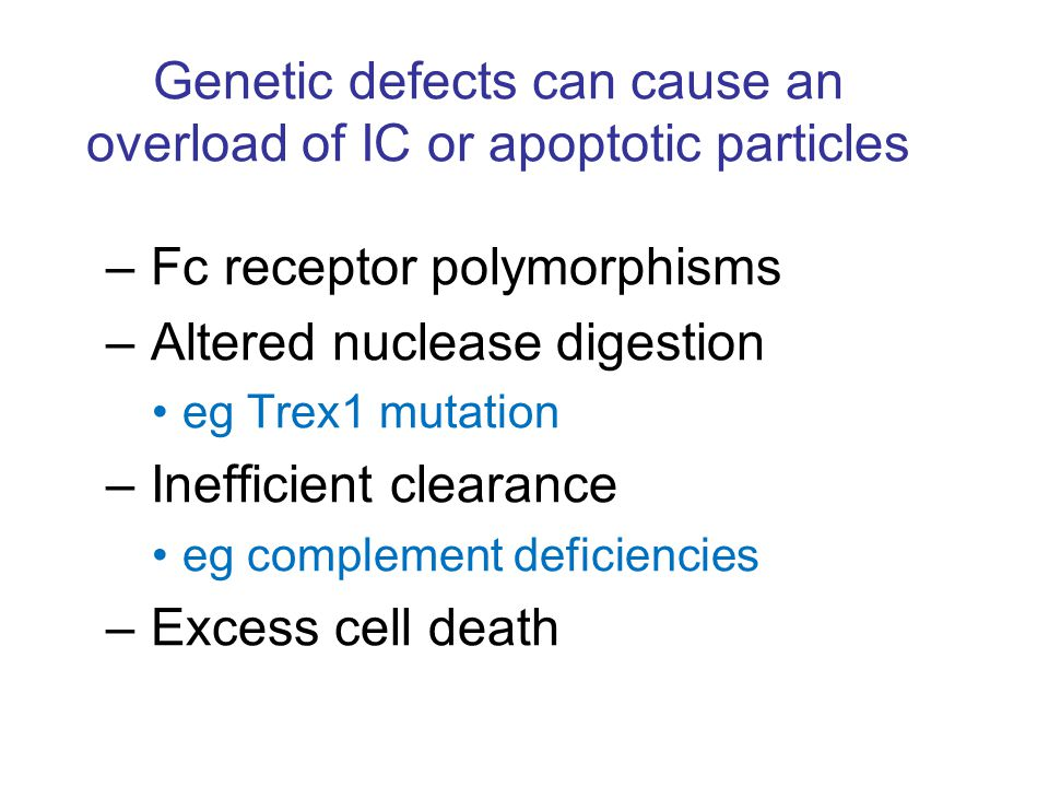 Genetic defects can cause an overload of IC or apoptotic particles – Fc receptor polymorphisms – Altered nuclease digestion eg Trex1 mutation – Inefficient clearance eg complement deficiencies – Excess cell death