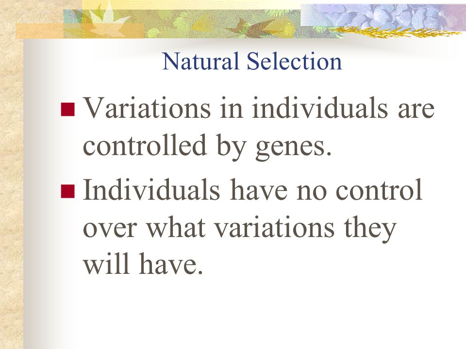 Useful variations are NOT ALWAYS passed on. Variations that are not useful may also be passed on.
