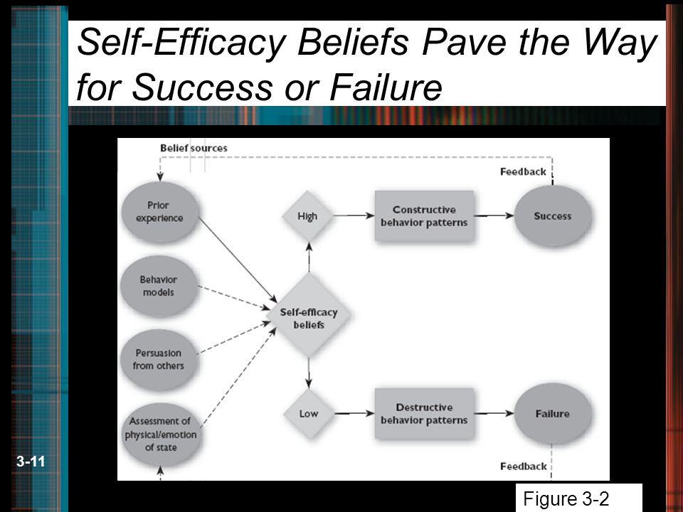 3-11 Self-Efficacy Beliefs Pave the Way for Success or Failure Figure 3-2