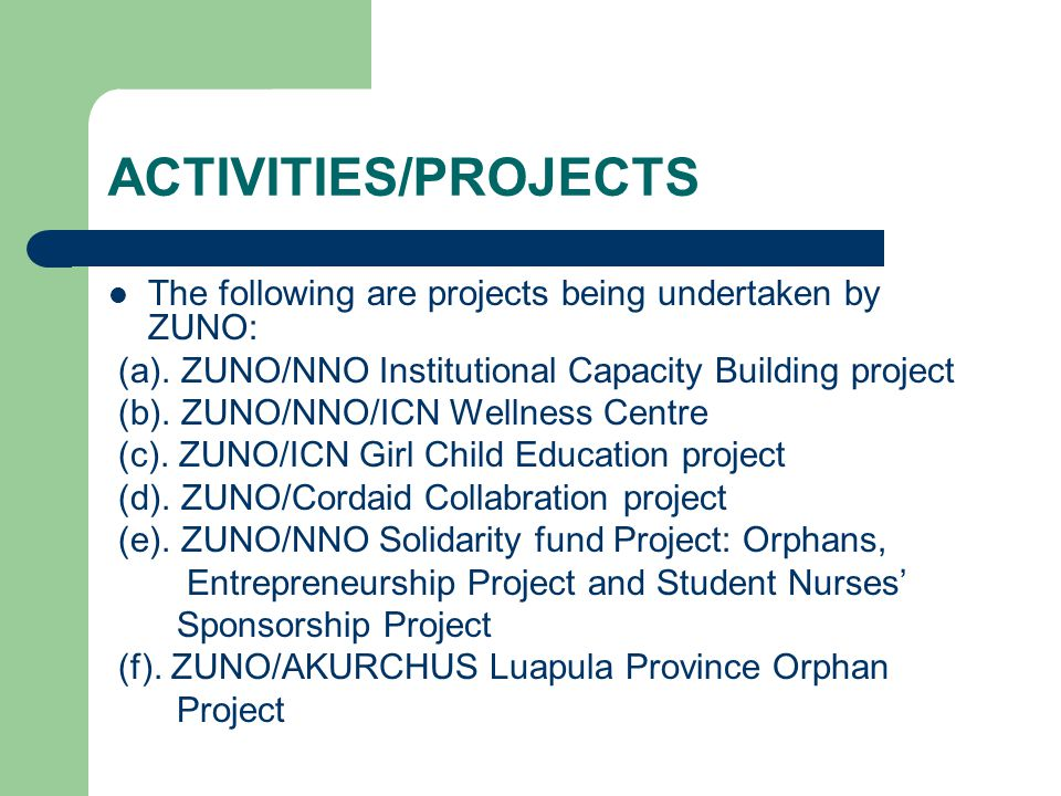 ACTIVITIES/PROJECTS The following are projects being undertaken by ZUNO: (a). ZUNO/NNO Institutional Capacity Building project (b). ZUNO/NNO/ICN Welln
